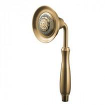 Forte 4-Spray 4-3/4 in. Raincan Handshower in Vibrant Brushed Bronze