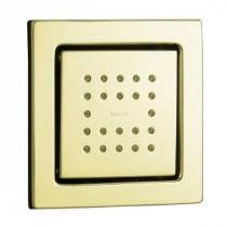 WaterTile Square 22-Nozzle 1-Spray 3-1/2 in. Raincan Body Sprayer in Vibrant French Gold